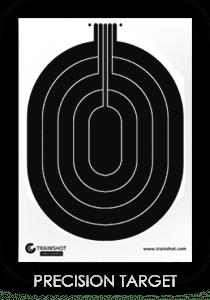 Trainshot precision smart target